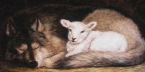 wolf-and-lamb-360x180