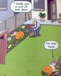 pumpkin-v-arse