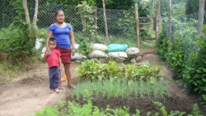 latin-america-nicaragua-suhey-and-son-in-vegetable-garden_opt_fullstory_large